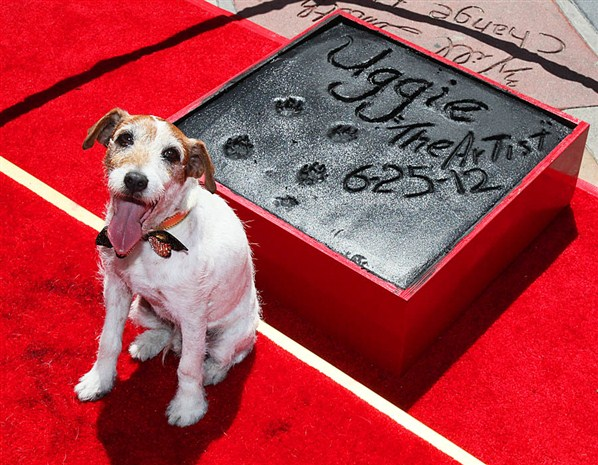 Uggie the dog retires from Hollywood career