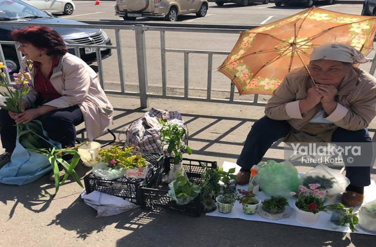 بائعة الورد في روسيا