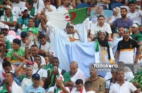حماس جماهير السنغال والجزائر قبل نهائي إفريقيا