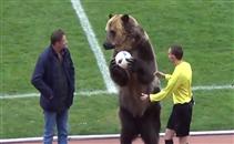 دب يُقدم المباراة فى ملاعب روسيا
