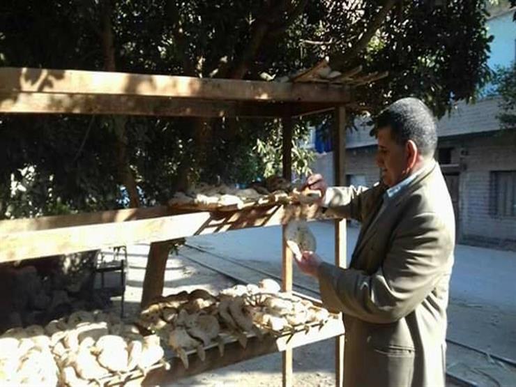 تحرير 34 محضر تمويني لمخابز بلدية في المنيا (2)