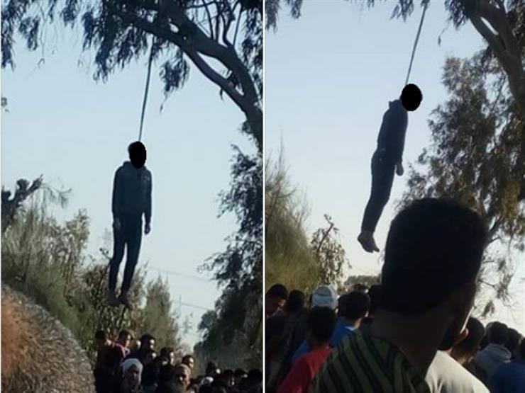 العثور-على-جثة-شاب-مشنوقًا-أعلى-شجرة