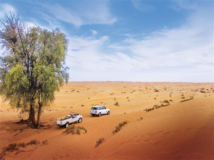 السفاري-في-الصحراء