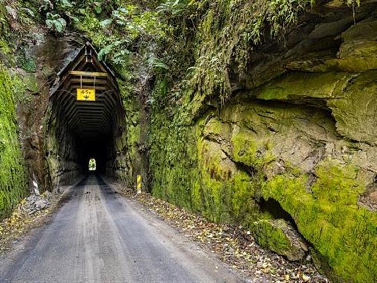 الطريق السريع العالمي المنسي ، نيوزيلندا