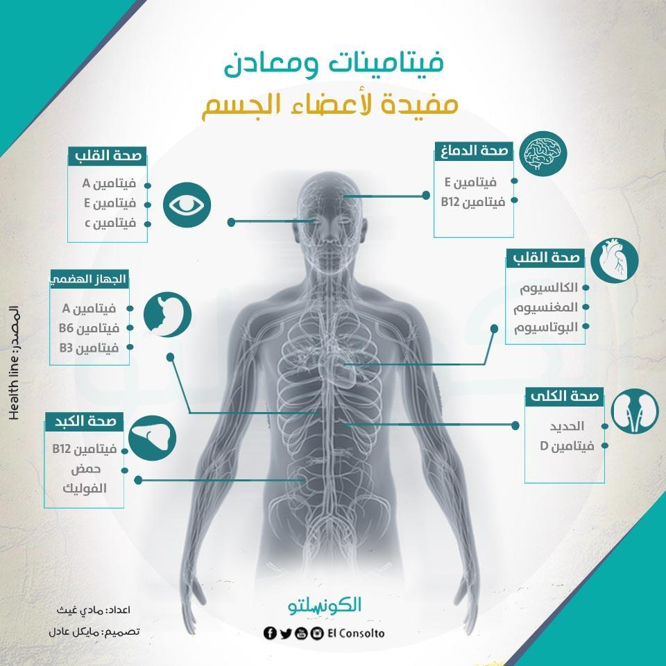 فيتامينات ومعادن مفيدة لأعضاء الجسم 2