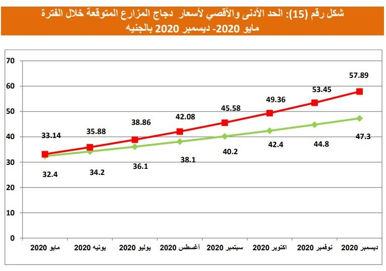 التوقعات لأسعار الدواجن حتى نهاية العام_1