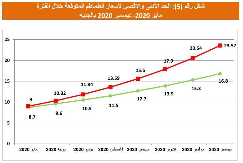 التوقعات لأسعار الطماطم حتى نهاية العام
