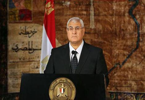 الرئاسة: للمغتربين بالداخل حق التصويت بالاستفتاء في اللجان القريبة