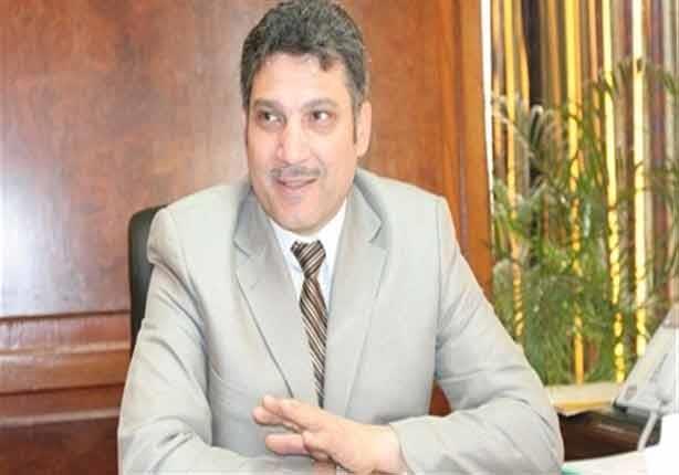 وزير الري يكشف نتائج لقاء السيسي بسلفا كير