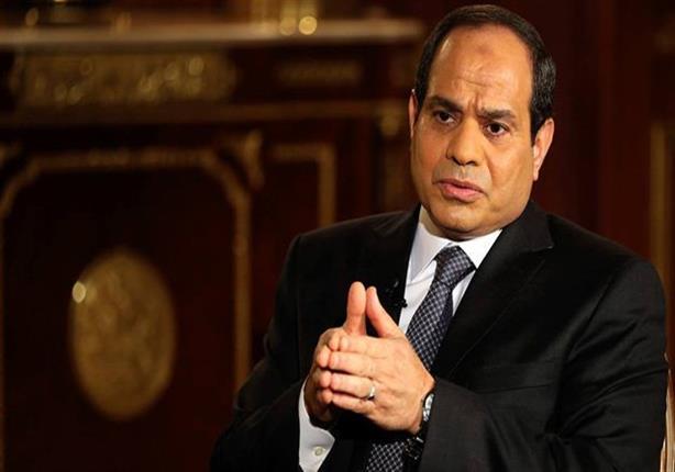 """الرئيس السيسى يطلب من وزير الداخلية في القبض على قاتل""""شيماء الصباغ"""""""