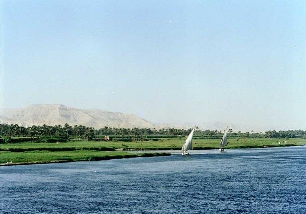 صحيفة اسرائيلية: تل ابيب تبتكر نباتات معدلة وراثياً تجفف مياه نهر النيل وتمنع وصولها لمصر