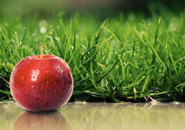 هل ثمرة تفاح يومياً تغنيك حقاً عن الذهاب إلى الطبيب؟
