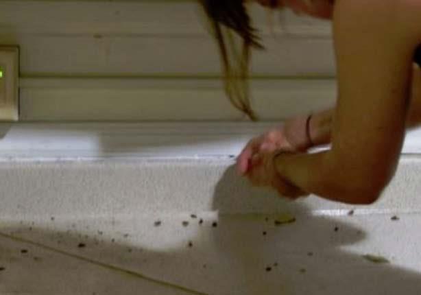 8 طرق طبيعية للتخلص من الصراصير فى منزلك