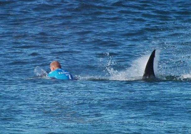 راكب أمواج يصارع قرشا على الساحل الشرقي لأستراليا