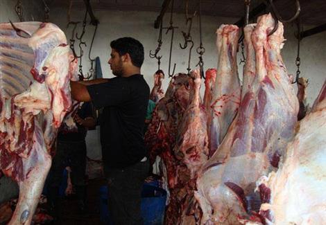 اتفاع اسعار اللحوم