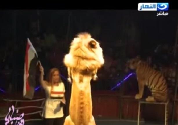 ريهام سعيد من اخطر مكان بداخل قفص الاسود تهتف تحيا مصر