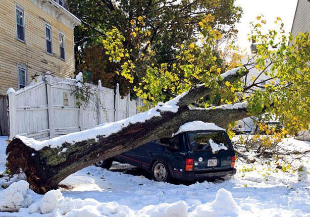 عاصفة تجتاح واشنطن وتقتل شخصين وتقطع الكهرباء عن الآلاف