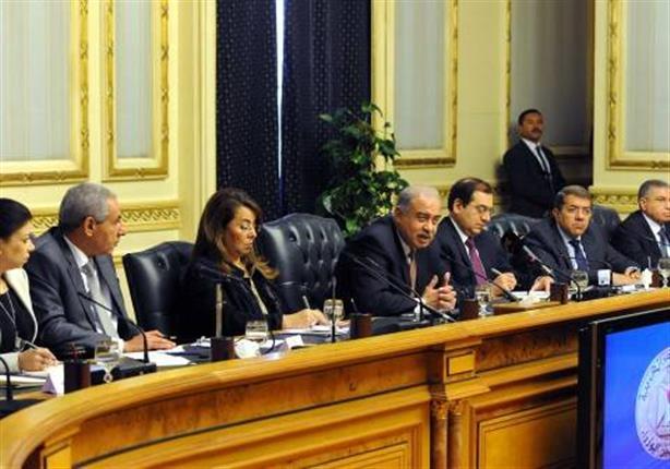 الحكومة: التراجع عن قرار الدواجن نوع من الممارسة الديمقراطية