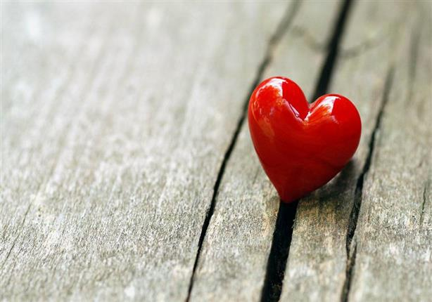 عيد الحب .... كما يراه الإمام الشهيد البوطي