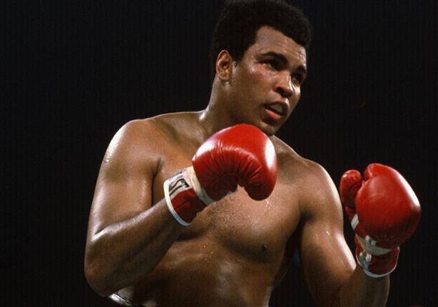 محمد علي