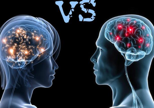 الفرق بين مخ الرجل ومخ المرأة ومن منهما أكثر ذكاءً