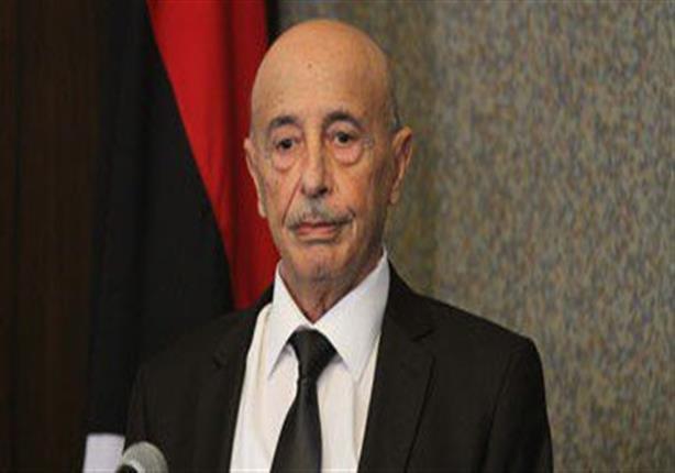 مصدر بالرئاسي الليبي: ترتيبات لعقد لقاء بين السراج وعقيلة برعاية مصرية