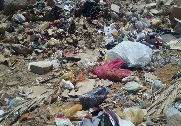 بالصور.. القمامة تحاصر مدارس في الوادي الجديد