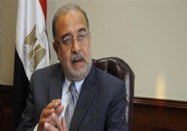 ''دعم مصر'' يحشد نوابه برسائل sms للتصويت على التعديل الوزاري