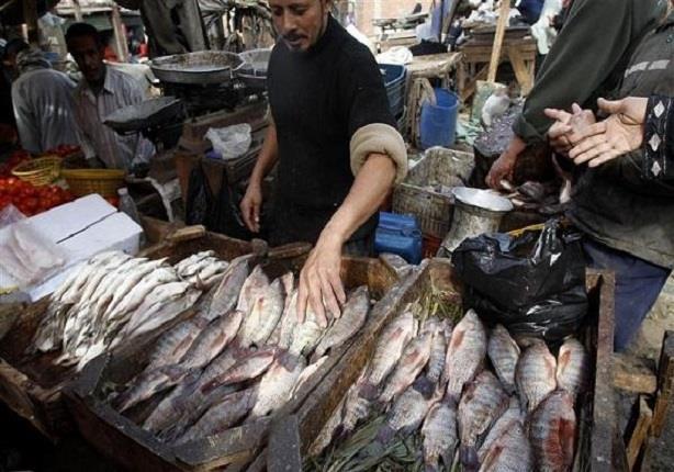 شعبة الأسماك تتوقع عودة الأسعار إلى طبيعتها سبتمبر المقبل