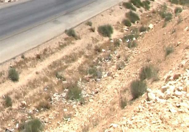 فيديو متداول يكشف عن أكبر مقبرة لجثث الحمير في الجيزة