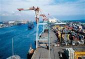 رغم تحذيرات الأرصاد.. ميناء الأدبية يستقبل 51.7 ألف طن فحم