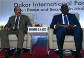 دول أفريقية تدعو الغرب للتدخل لوقف تدفق الأسلحة من ليبيا