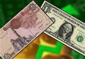 الدولار يواصل الاستقرار أمام الجنيه.. وطرح 17.24 مليار دولار في 292 عطاء
