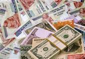 الجنيه يستقر أمام الدولار في البنوك