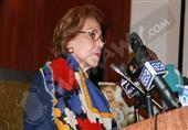 التلاوي: الاتحاد الأوروبي يعادي مصر وتقرير بعثته عن الانتخابات أفقده المصداقية