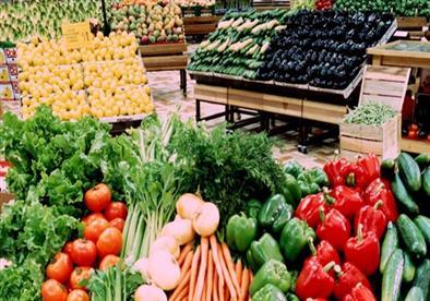 الزراعة: 200 ألف طن زيادة بصادرات مصر من الفواكة والخضروات في أسبوع