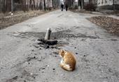 سكاي نيوز: فضلات قطة تتسبب في تسرب إشعاعي في أمريكا