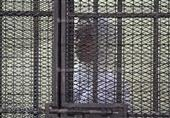 السجن من المؤبد إلي 15عاما لمتهمي
