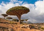بعيداً عن عاصفة الحزم.. أشهر المناطق السياحية في اليمن