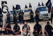 مقتل 11 تكفيريا خلال ضربات جوية جنوب الشيخ زويد
