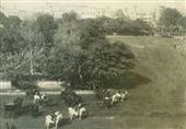 ميدان عابدين في 1892