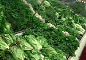الخضراوات الورقية يشكل درعا واقيا ضد الشيخوخة