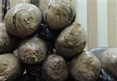 ضبط 6 كيلو بانجو  بحوزة ربة منزل في قنا