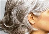 الشعر الأبيض
