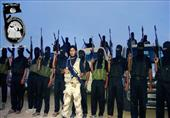 مقتل 16 عنصرًا من بيت المقدس وإصابة 4 اخرين خلال قصف جوي بالشيخ زويد
