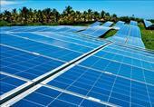بدء تنفيذ مشروع الطاقة الشمسية بالفرافرة في الوادي الجديد أول مايو