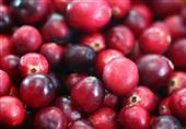 أطعمة تنظف الشرايين وتقي من أمراض القلب
