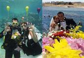 """زفاف """"يسرا وكريم"""".. أول """"زغروطة"""" تحت الماء"""