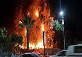 بالصور - السيطرة علي حريق هائل شب في حديقة قصر الزناتي بالأقصر