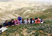 """بالصور: فريق """"المسارات المقدسي"""".. في حضرة فلسطين التي غيّبها الاحتلال"""